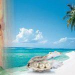 Pemkab Gorut Akan Kembangkan Budidaya Mutiara Laut