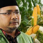 Dituding Menjual Bibit Jagung, Begini Reaksi PP GP Ansor