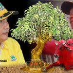 Memenuhi Unsur Tindak Pidana Pemilu, Berkas Bupati Darwis Diteruskan ke Polda Gorontalo