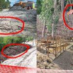 Bupati Boalemo Diduga Merusak Lingkungan, Hukumannya Berat