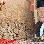 Soal Kekeringan di Kabupaten Gorontalo, Syam T. Ase Angkat Bicara