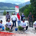 Setelah Dirusak, Bupati Darwis Tanam Kembali Mangrove di Pantai Ratu