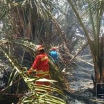 Gara-Gara Sampah Warga Perumahan Dulomo Nyaris Jadi Korban Kebakaran