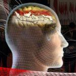 "Persatuan dan Kerukunan Bangsa Terletak di ""Otak"" Dewan"