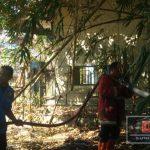 Lagi! Kebakaran Lahan Akibat Sembrono Bakar Sampah