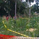 Diduga Berkelahi dalam Kondisi Mabuk, Ari Ditemukan tak Bernyawa di Kebun Jagung