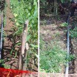Proyek Pamsimas di Desa Papualangi Mangkrak, Warga: Ada Penyalahgunaan Dana?