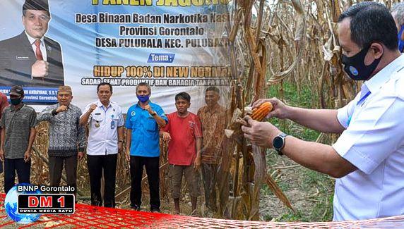Canangkan Desa Binaan, Wisnu: Kita Tanam Jagung Daripada Tanam Ganja